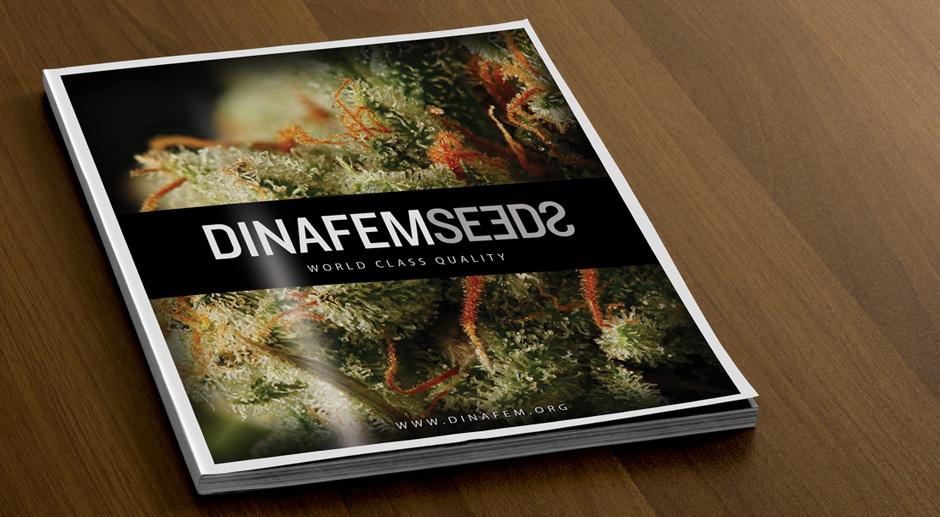 Dinafem Catalogo 2011 por Triplevdoble